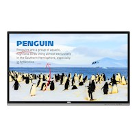 "BenQ RP552H - 55"" Klasse - Education Ser"